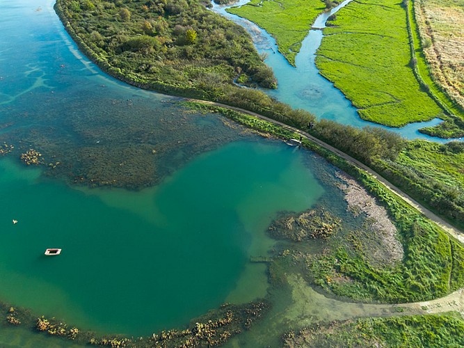The Orne estuary