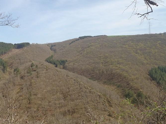 Vue sur la Molberlee