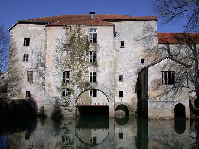 Ruines du moulin de Lizy-sur-Ourcq