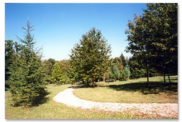 L'Arboretum