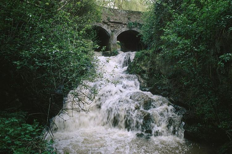 Etangs et cascade de Coeurcq (photo) 4