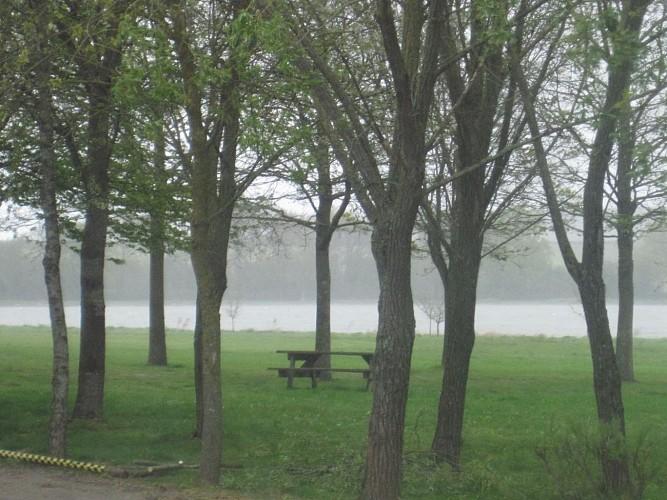 La Rincerie : site protégé, lac, pêche, ornithologie, activités nature, nautiques, plein-air, Camping***, salles, hébergement