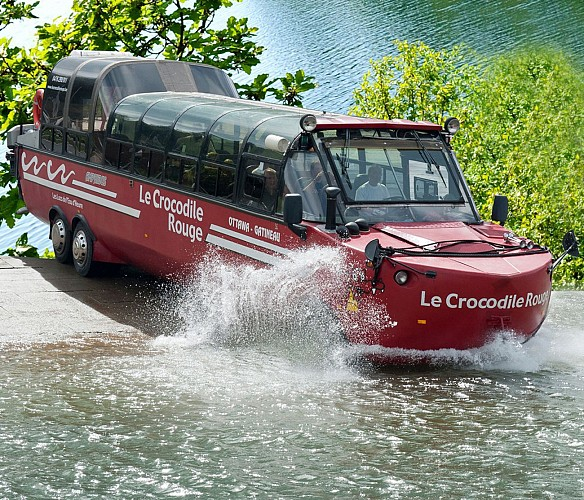 Le Crocodile Rouge