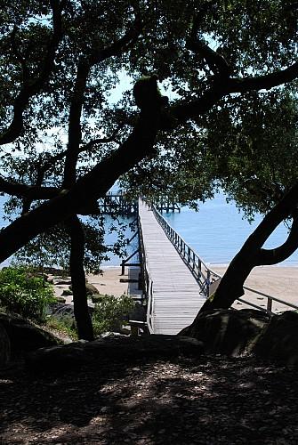 Point of interest plage des dames noirmoutier en l 39 ile - Office de tourisme noirmoutier en l ile vendee ...