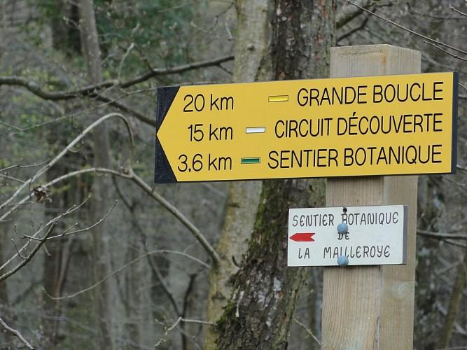 Départ itinéraires balisés de La forêt de la Mailleroye.