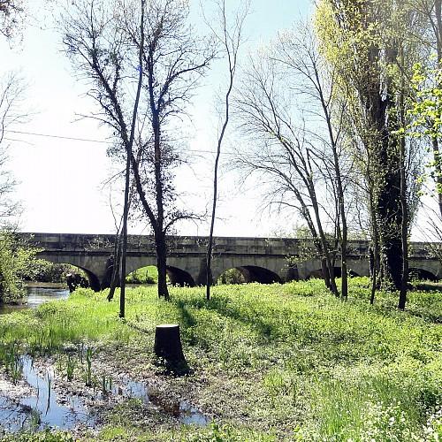 Pont à 5 arches de Demigny 71150