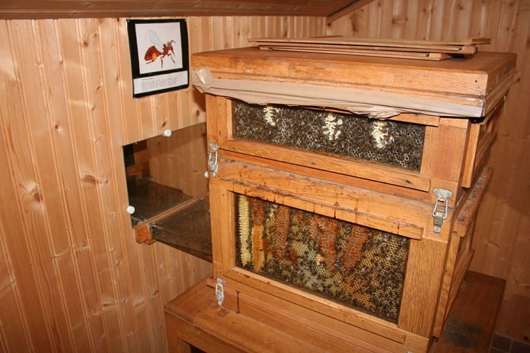 Musee_apiculture_03