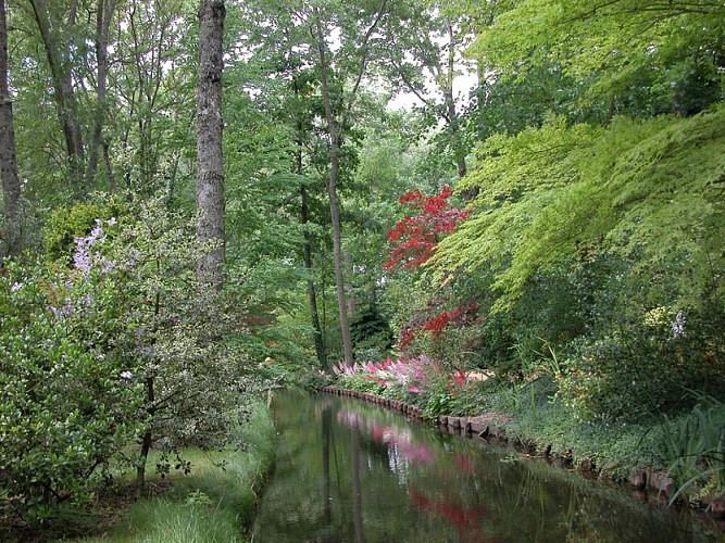 Arboretum_des_pres_des_culands _03