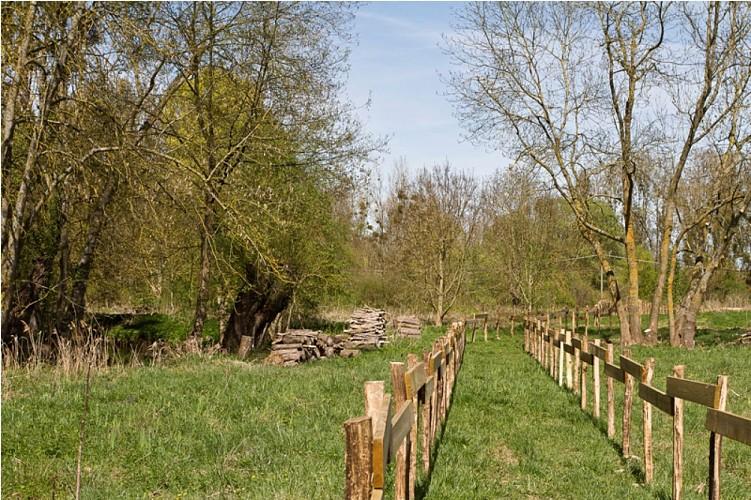 Parc départemental du Puiseaux-Vernisson