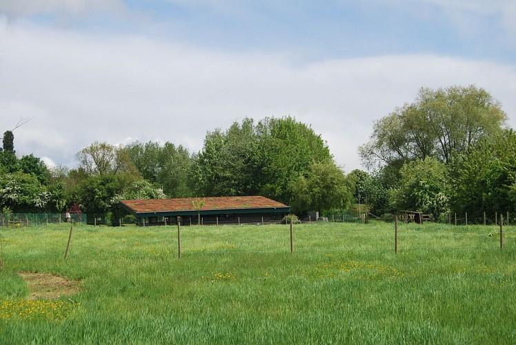 Zone humide d'intérêt biologique de la Fontaine Bleue - Mouscron -
