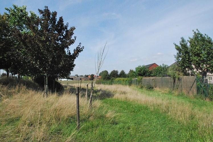 Zone sport Nature - Cabocherie - Mouscron