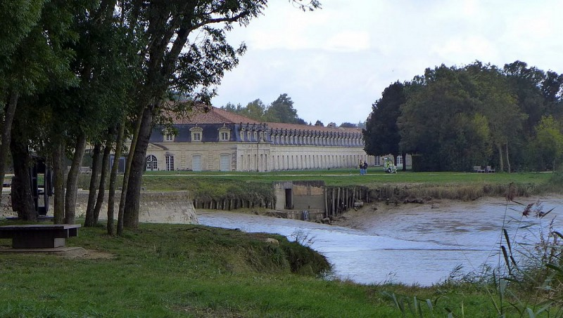 Sentier le long de la Charente, vers Rochefort