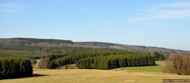 Champlon-en-Ardenne