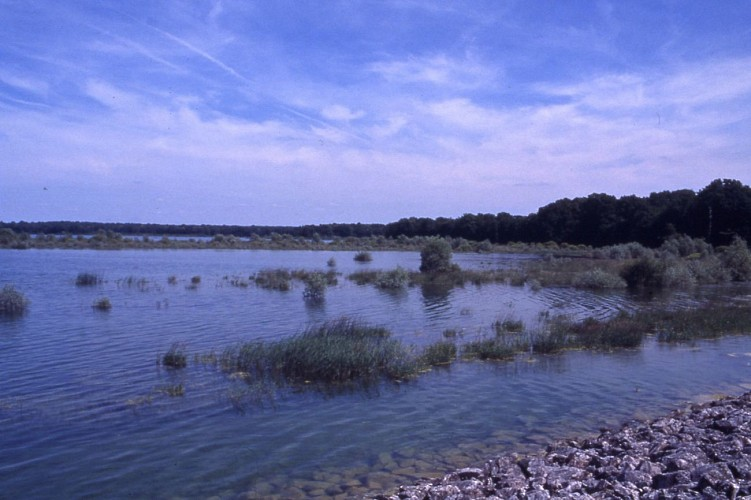 Queue de retenue du lac du Temple