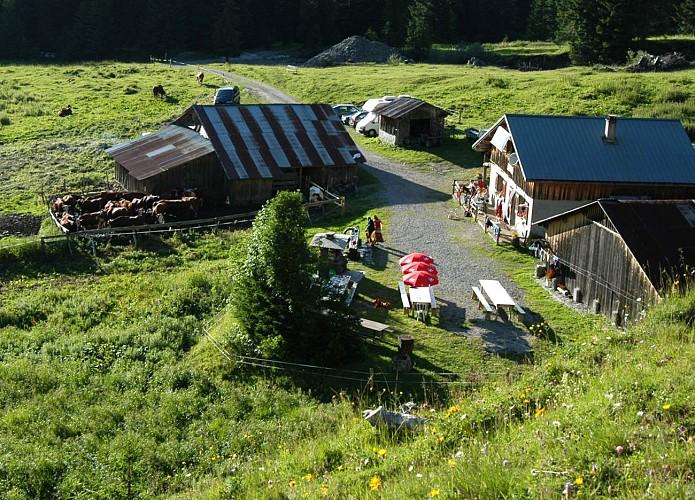 Chardonnière mountain refuge