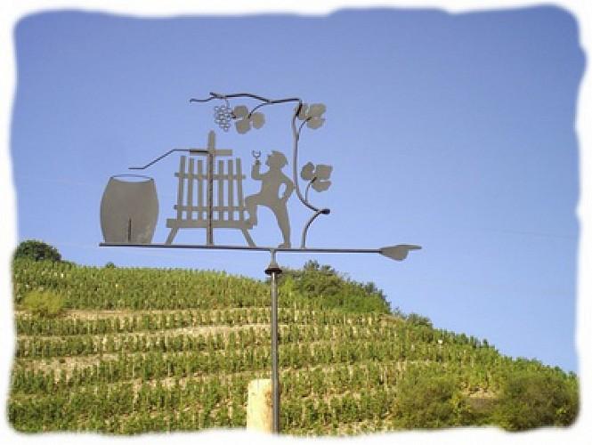 Weingut Guy Farge