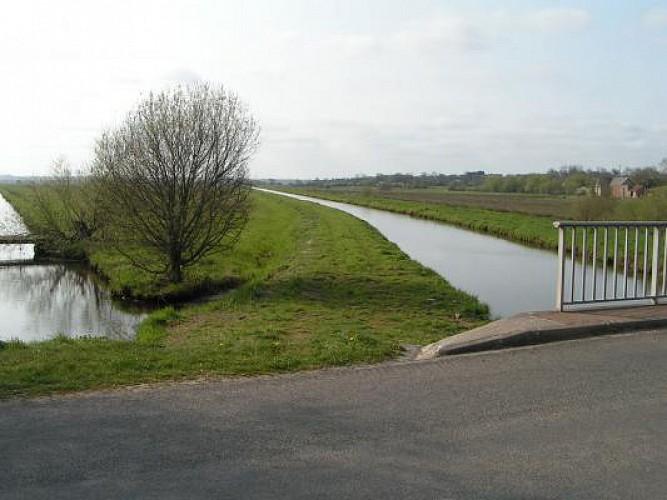 Canal de Vire et Taute