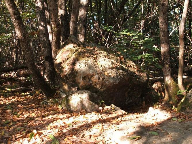 Dolmen de Peyrebrune