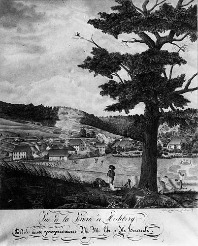 Le site du Hochberg