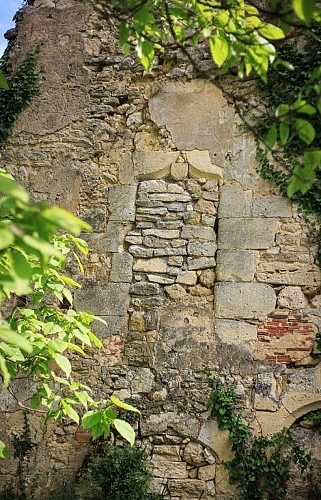 Ruines de l'ancienne maison noble de Gadeau