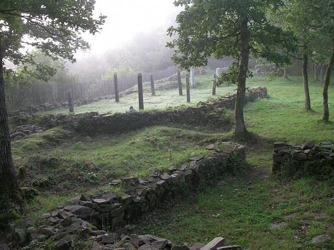 La Motte Castrale d'Olivet
