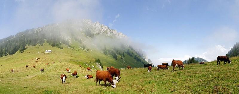 Alpage d'Ouzon