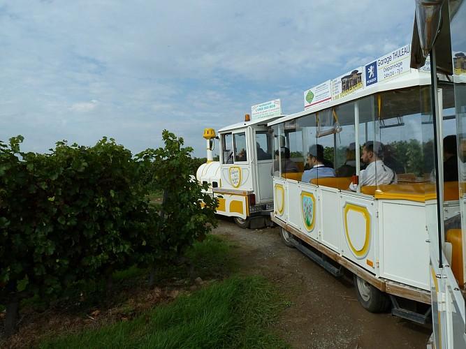 PETIT TRAIN TOURISTIQUE DE CHALONNES