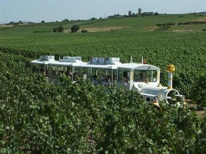 PETIT TRAIN TOURISTIQUE DES VIGNES