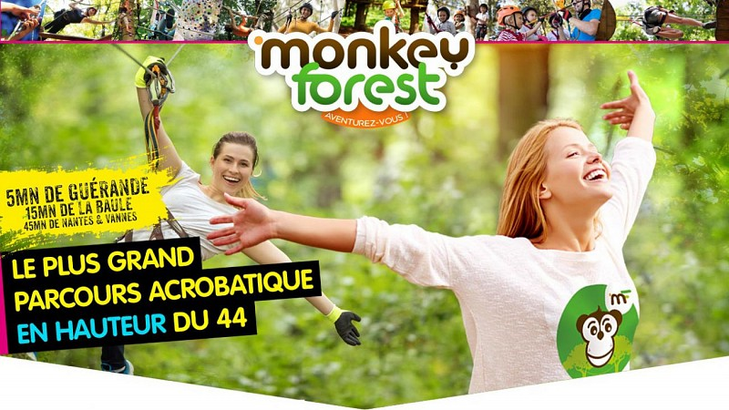 MONKEY FOREST AVENTURES & LOISIRS