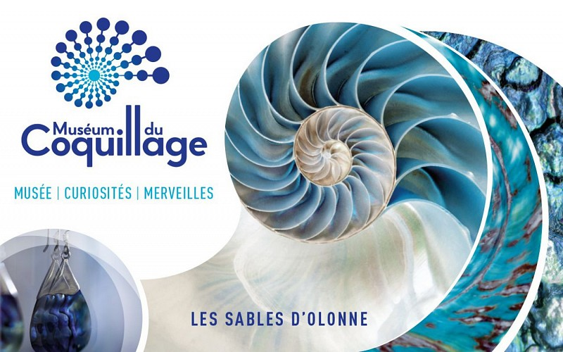 MUSÉUM DU COQUILLAGE