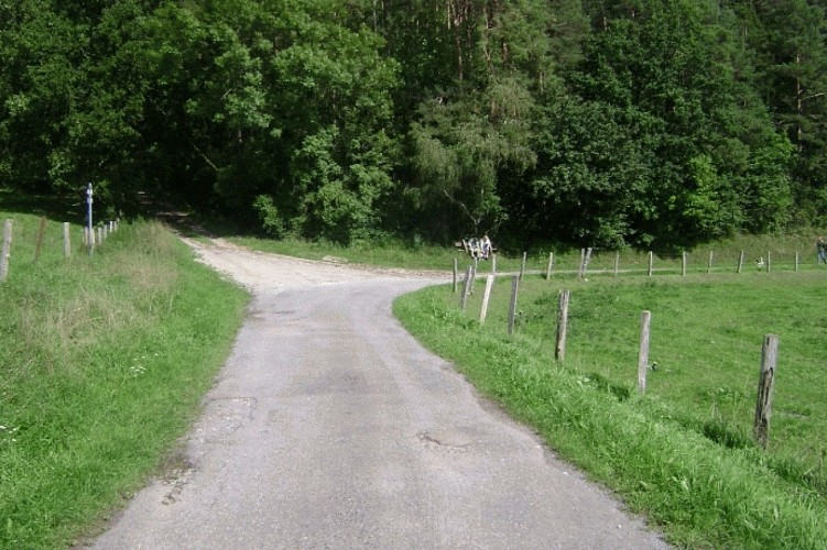 Empruntez le deuxième chemin de terre qui monte sur votre gauche.