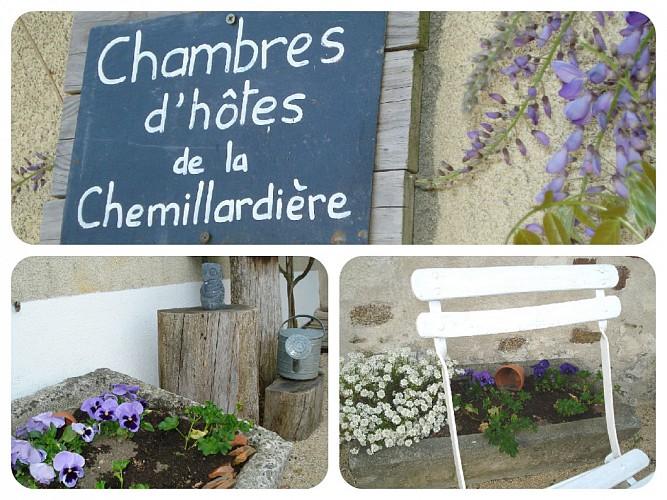 CHAMBRE D'HÔTES LA CHEMILLARDIÈRE - PRIMEVÈRE