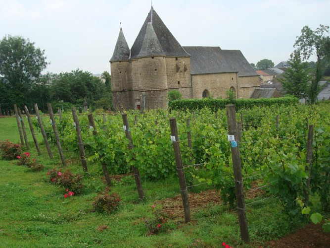 Eglise et Vignoble de Servion