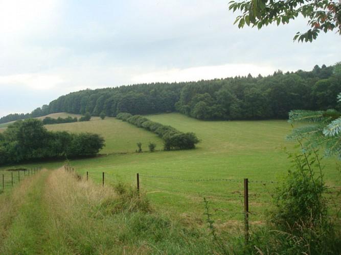 point de vue sur la vallée de L'audry