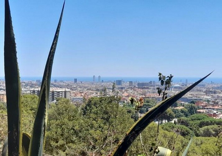 Guided Bike Tour of Barcelona (French only)