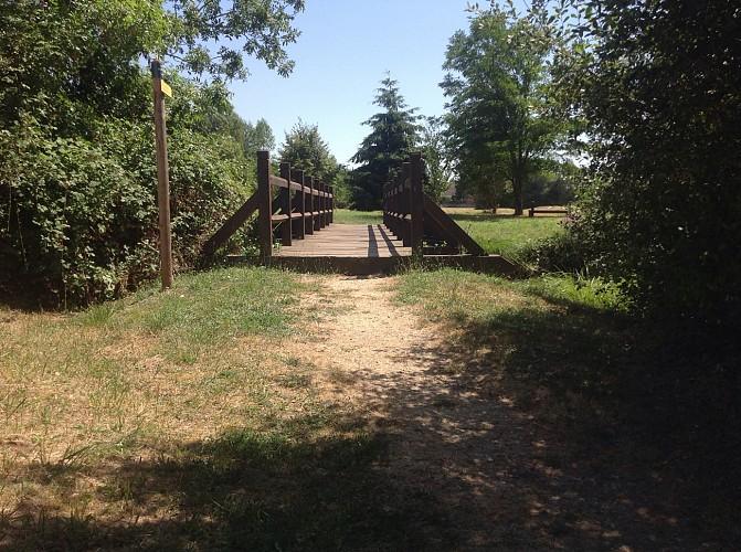 Pont de bois