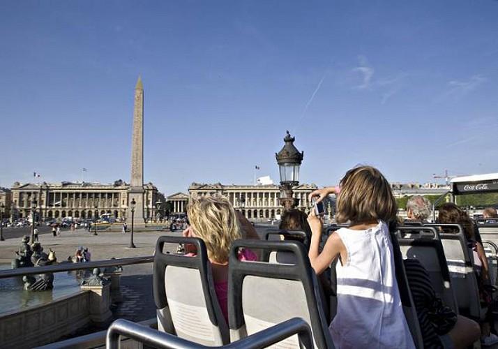 Paris transport pass: Unlimited access to the metro, bus, RER (regional railway) + Seine cruise