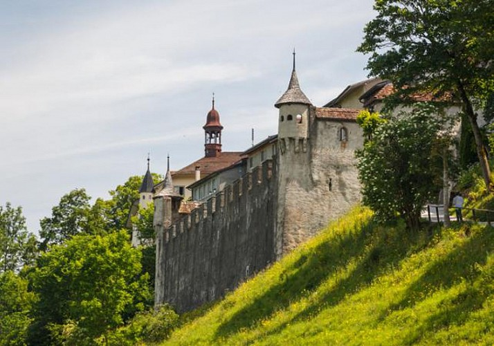 Trip to Gruyères, Hot Chocolate and Cheese Tasting + Golden Express Tour – Departing from Lausanne
