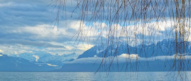 Return Cruise from Lausanne to Vevey