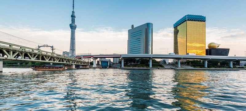 Tokyo in a day – Citytour by bus, Tokyo Tower visit, traditional lunch, tea ceremony and cruise