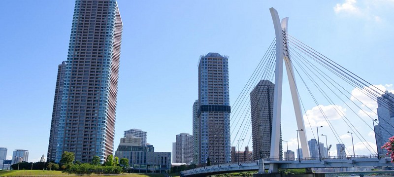 Tokyo Citytour by bus, World Trade Center tour and cruise on the Sumida river