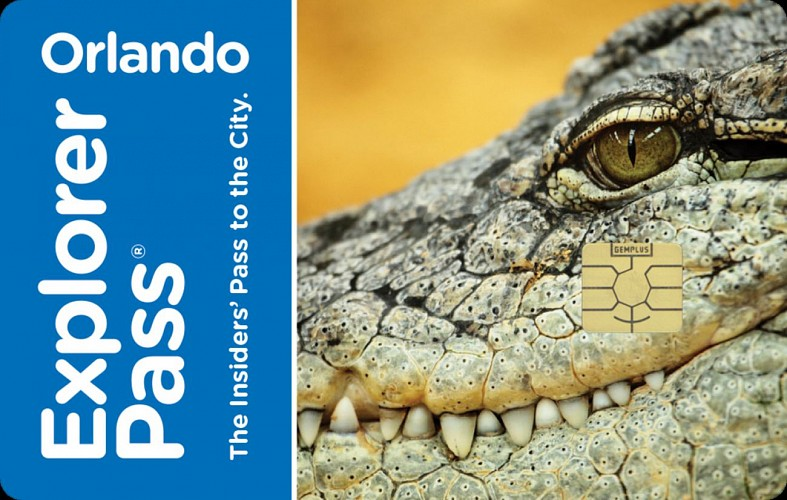 Best of Orlando Pass: 4 Attractions of your Choice + Transport Pass