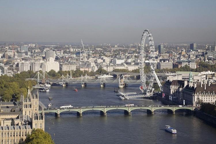 London by Mini along the Thames – 2-hour tour
