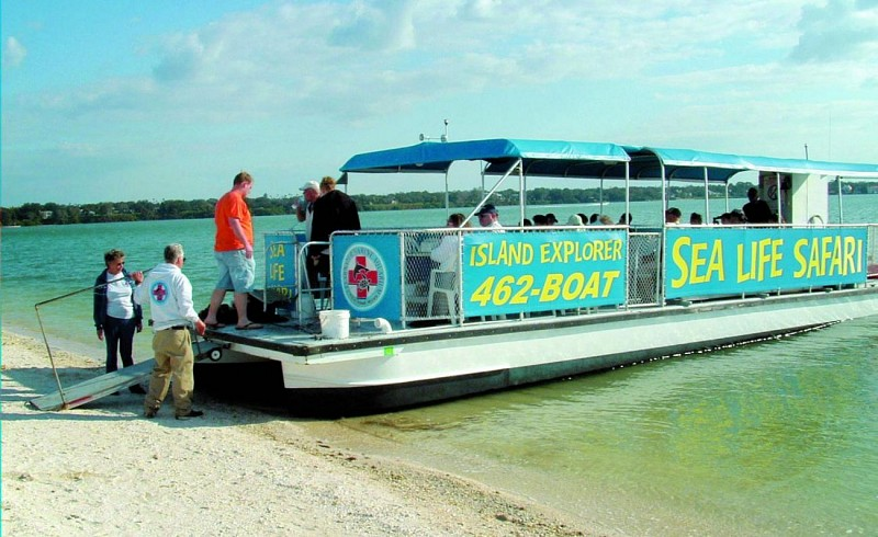 Marine Safari Cruise in the Gulf of Mexico – Departing from Clearwater