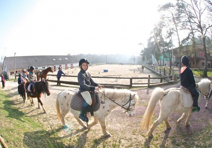 Horse Riding in the Brocéliade Forest