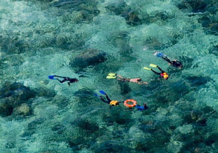 Croisière & plongée avec masque et tuba à Upolu sur la Grande Barrière de Corail – Au départ de Cairns