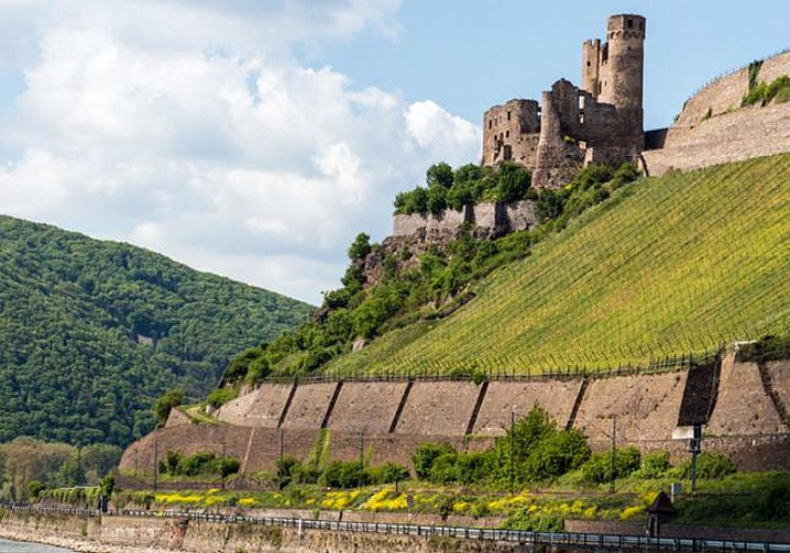 Day Trip in the Rhine Valley by Bus & Boat