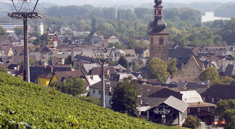 Bus Tour of Frankfurt & Trip to the Rhine Valley