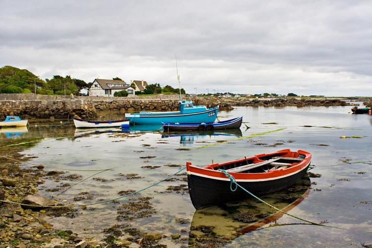 Excursion d'une journée à la baie de Galway dans la région du Connemara, au départ de Dublin