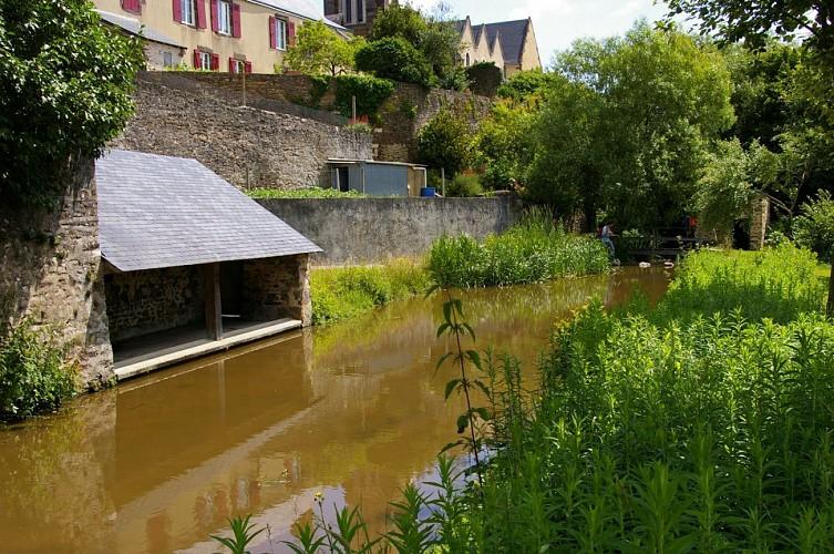 Le Merdereau